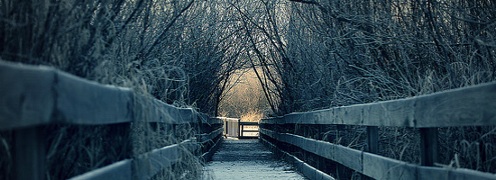 Winter Moments Title Header