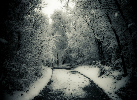 Winter Path by Strobehead