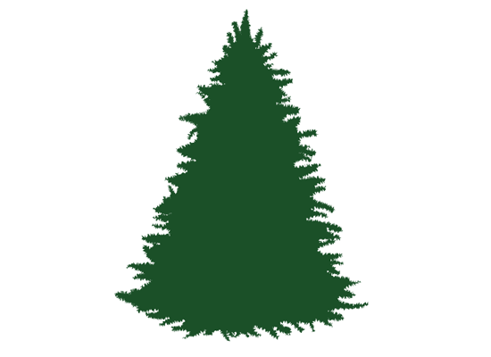 The tree should look like this after the Wrinkle Tool