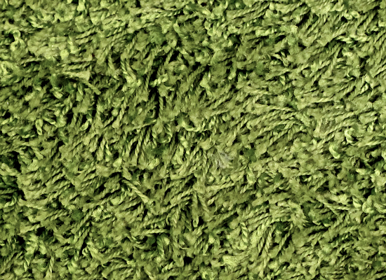 green carpet texture. Green Carpet Texture G